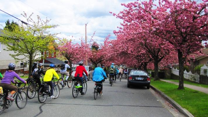 vancouver-spring-2014-012.jpg
